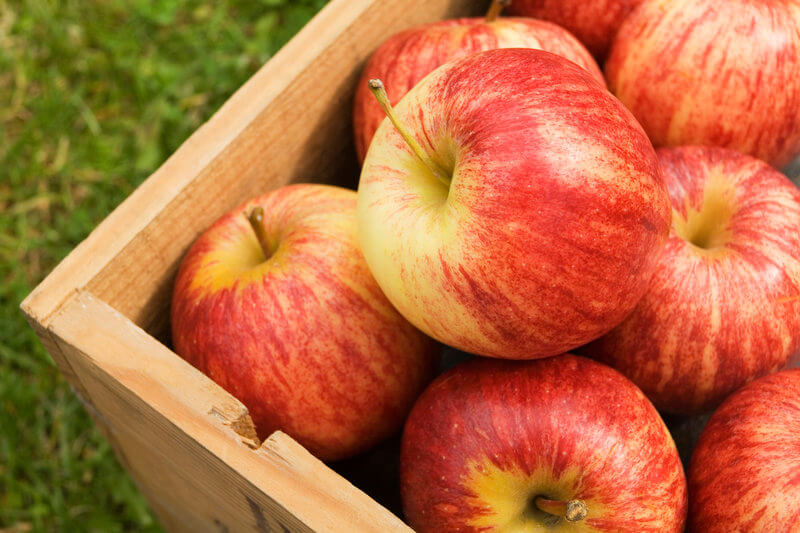 Apples are good for your heart health