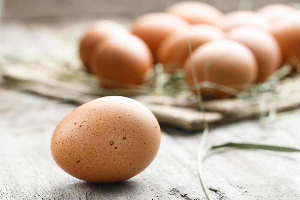 Eggs contain a lot of vitamin d
