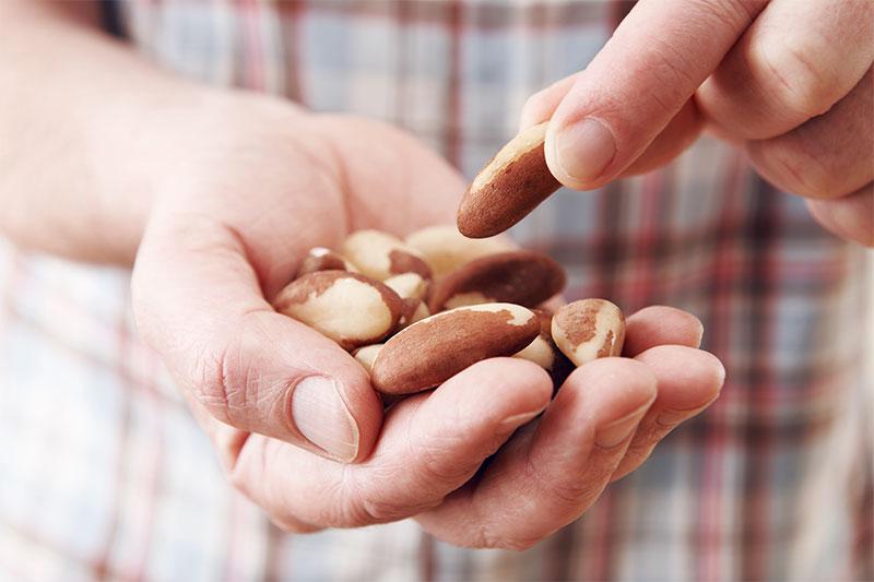 Eine Frau hält eine Handvoll Nüsse.