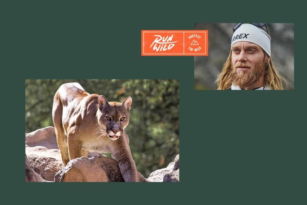 Run Wild mit Berglöwin und Trailrunner